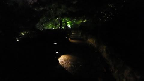 九州お泊りデートにおススメ・武雄温泉の夜