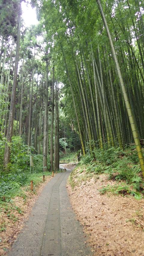 九州お泊りデートにおススメ・武雄神社